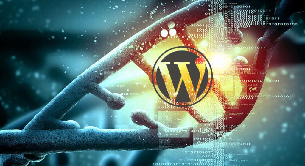 Wordpress Güvenlik Güncellemesi