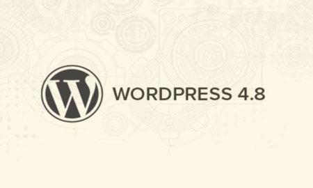 Wordpress 4.8 güncellemesi